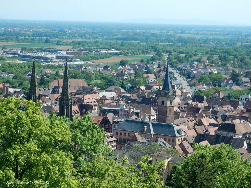 Panorama sur la ville d'Obernai