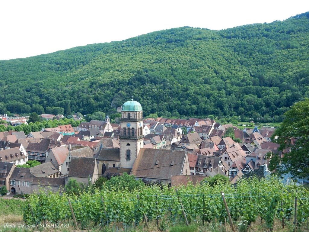 kaysersberg-panorama