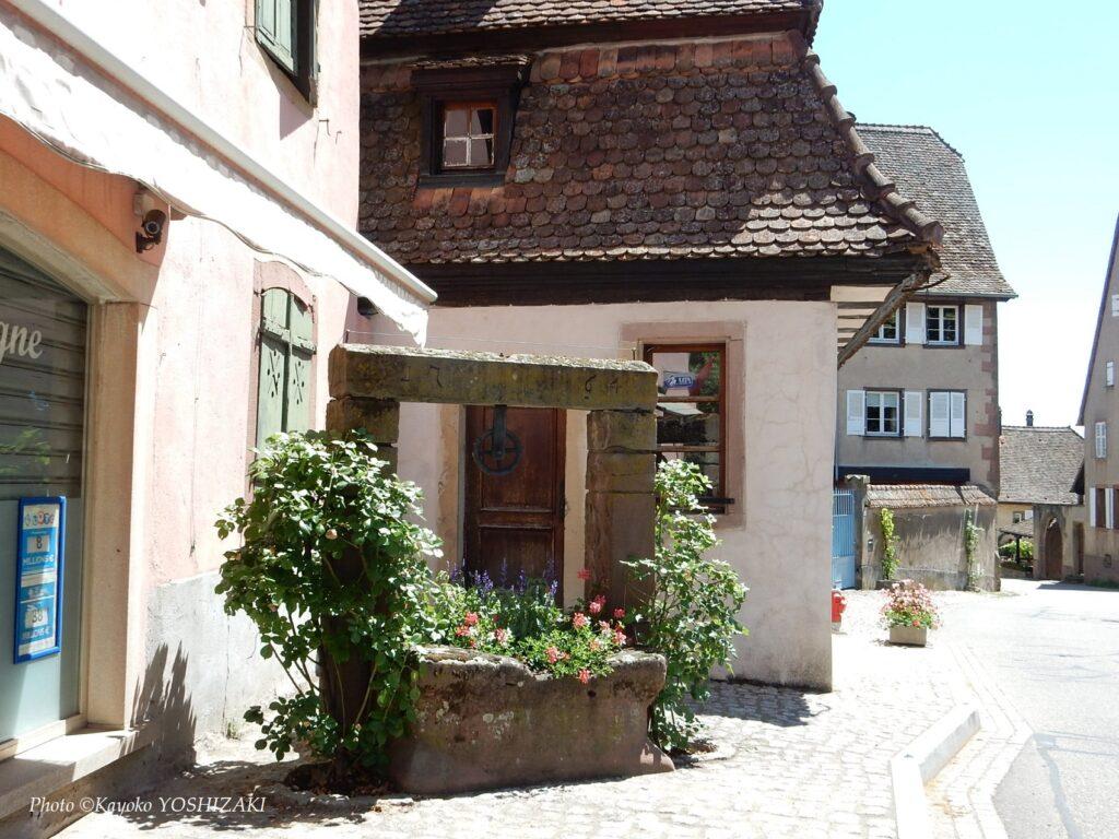 Mittelbergheim-puits-fleuri