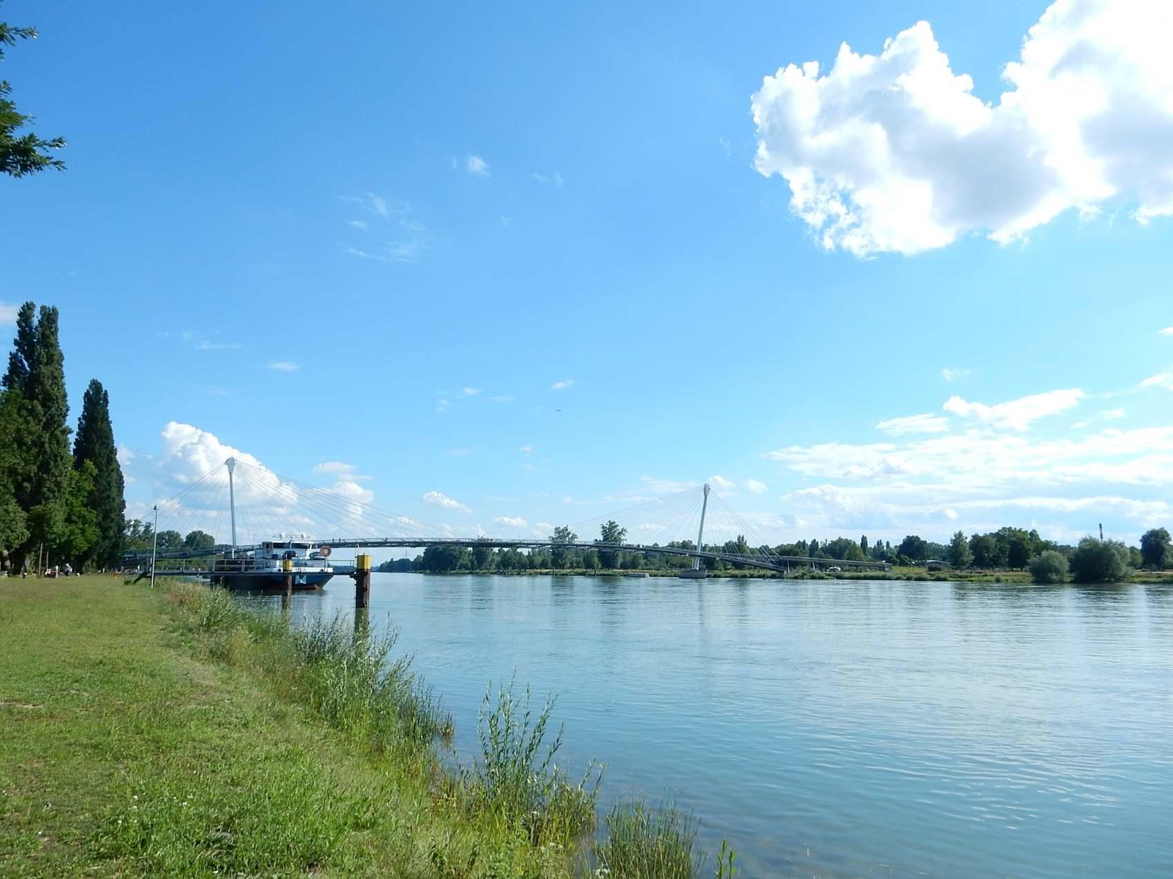rhin_bateau_pont